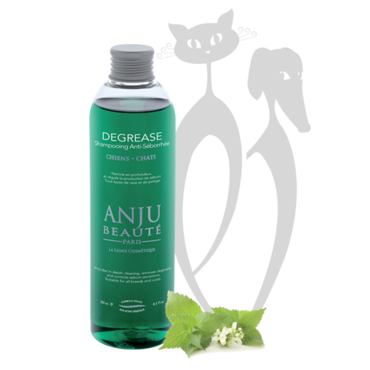 Anju-Beaute DEGREASE shampoo