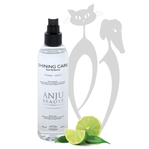 Anju-Beaute SHINING CARE suihke