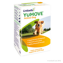 YuMOVE Young & Active 60tbl